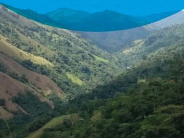 Asiste al foro: tendencias de deforestación y alternativas de mitigación