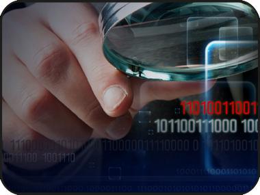 Semillero internacional: Investigación aplicada a las ciencias administrativas