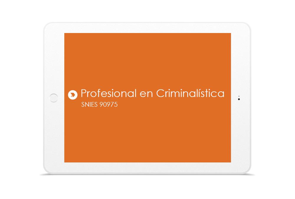 PROFESIONAL EN CRIMINALÍSTICA
