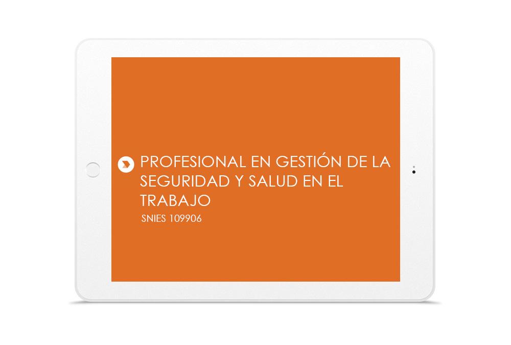 PROFESIONAL EN GESTIÓN DE LA SEGURIDAD Y SALUD EN EL  TRABAJO