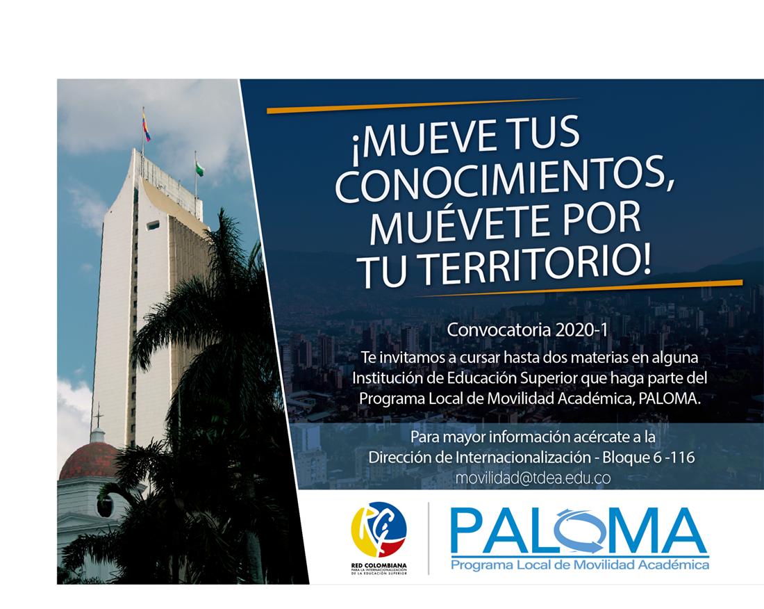 Paloma convocatoria 2020 - 1