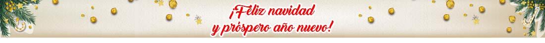 Banner top navidad 2019